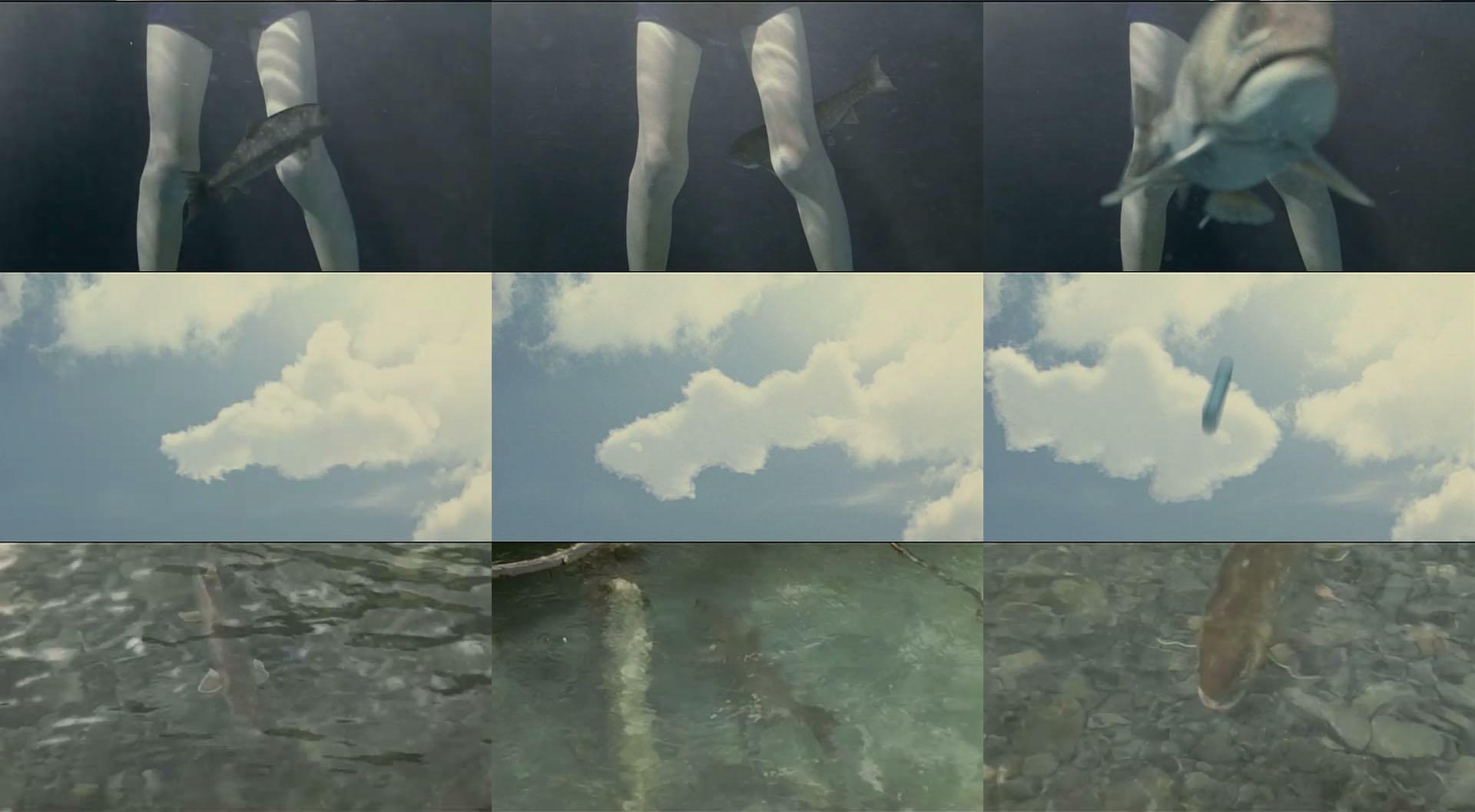 VFX 雨鱒の川_002