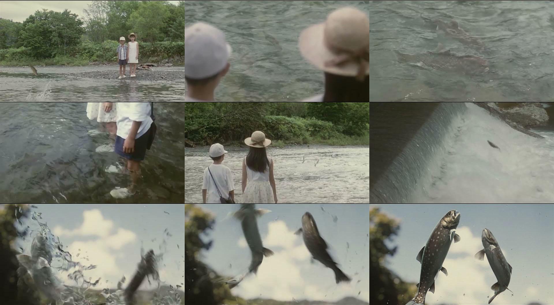 VFX 雨鱒の川_004